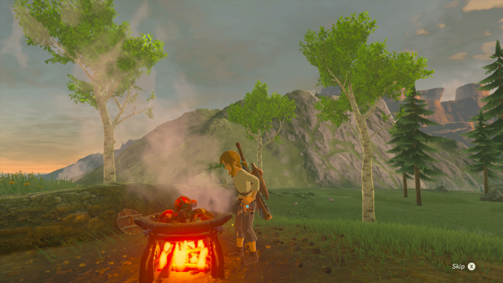 Breath of the Wild tips Cook